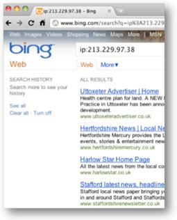 Bing Reverse IP Lookup